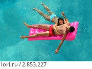 Молодая пара плавает в бассейне. Стоковое фото, фотограф Светлана Полушкина / Фотобанк Лори