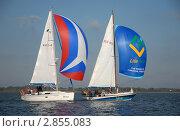 Купить «Спортивно туристические яхты с красивыми яркими спинакерами», эксклюзивное фото № 2855083, снято 1 октября 2011 г. (c) Svet / Фотобанк Лори