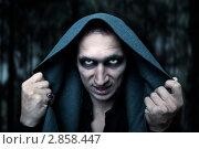 Купить «Портрет мужчины в сером плаще с капюшоном в образе колдуна или зомби ночью», фото № 2858447, снято 24 августа 2011 г. (c) katalinks / Фотобанк Лори
