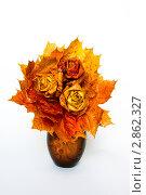 Купить «Осень. Букет роз из кленовых листьев», фото № 2862327, снято 11 октября 2011 г. (c) Светлана Кучинская / Фотобанк Лори