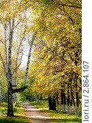 Купить «Осенний парк», фото № 2864107, снято 8 октября 2011 г. (c) Хайрятдинов Ринат / Фотобанк Лори