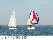 Купить «Калининградский залив. Парусные яхты», эксклюзивное фото № 2865255, снято 1 октября 2011 г. (c) Svet / Фотобанк Лори