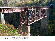 Купить «Ведьмин мост», фото № 2875063, снято 13 октября 2011 г. (c) RedTC / Фотобанк Лори