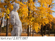 Купить «Осень в парке», фото № 2877087, снято 15 октября 2011 г. (c) Олег Трушечкин / Фотобанк Лори