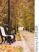 Осенний парк. Стоковое фото, фотограф Иван Губанов / Фотобанк Лори