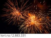 Купить «Пиротехническое шоу. Яркие огни взрываются в ночном небе», фото № 2883331, снято 9 мая 2009 г. (c) Losevsky Pavel / Фотобанк Лори
