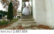 Купить «Свадьба крымских татар», видеоролик № 2887859, снято 18 октября 2011 г. (c) Владимир Никулин / Фотобанк Лори