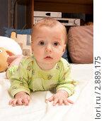 Купить «Ребенок (8 мес) лежит на животе», эксклюзивное фото № 2889175, снято 5 декабря 2010 г. (c) Охотникова Екатерина *Фототуристы* / Фотобанк Лори