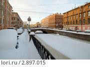 Купить «Зимний Санкт-Петербург», эксклюзивное фото № 2897015, снято 11 декабря 2010 г. (c) Александр Алексеев / Фотобанк Лори