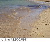 Песчаный берег Египта. Стоковое фото, фотограф Королькова Татьяна Викторовна / Фотобанк Лори