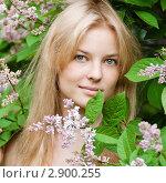 Купить «Красивая блондинка среди цветком сирени», фото № 2900255, снято 3 июня 2011 г. (c) Александр Маркин / Фотобанк Лори