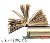 Купить «Стопка книг», фото № 2902315, снято 17 февраля 2019 г. (c) Ласточкин Евгений / Фотобанк Лори