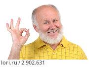 Купить «Пожилой мужчина показывает рукой знак ОК», фото № 2902631, снято 1 октября 2011 г. (c) Сергей Старуш / Фотобанк Лори