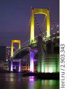 Купить «Мост Радуги в Токио, Япония», фото № 2903343, снято 22 декабря 2007 г. (c) Юрий Запорожченко / Фотобанк Лори