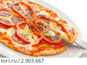 Купить «Пицца», фото № 2903667, снято 8 июля 2011 г. (c) Лямзин Дмитрий / Фотобанк Лори