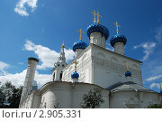 Купить «Церковь Николая Чудотворца в Пушкино. Московская область», эксклюзивное фото № 2905331, снято 22 июня 2011 г. (c) lana1501 / Фотобанк Лори
