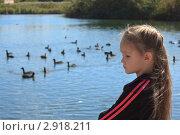 Девочка и утки. Стоковое фото, фотограф oleg didenko / Фотобанк Лори