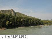 Купить «Река Катунь», эксклюзивное фото № 2918983, снято 19 августа 2011 г. (c) Free Wind / Фотобанк Лори