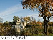 Вид на Царицын павильон (2011 год). Редакционное фото, фотограф Татьяна Игнатьева / Фотобанк Лори