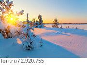 Купить «Зимний пейзаж. Закат солнца», фото № 2920755, снято 5 февраля 2011 г. (c) Икан Леонид / Фотобанк Лори