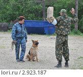 Купить «Обучение служебной собаки», эксклюзивное фото № 2923187, снято 27 мая 2011 г. (c) Free Wind / Фотобанк Лори