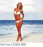 Девушка на пляже в тропиках. Стоковое фото, фотограф Иван Михайлов / Фотобанк Лори