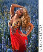 Купить «Девушка в ярком платье среди полевых цветов», фото № 2927727, снято 15 июня 2010 г. (c) bashta / Фотобанк Лори