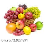 Купить «Корзина с фруктами», фото № 2927891, снято 4 ноября 2011 г. (c) Ласточкин Евгений / Фотобанк Лори