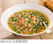 Купить «Суп из овощей», фото № 2928651, снято 18 сентября 2006 г. (c) Monkey Business Images / Фотобанк Лори