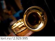 Труба флюгель-горн. Стоковое фото, фотограф Юрий Петров / Фотобанк Лори
