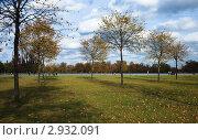 Купить «В осеннем парке», фото № 2932091, снято 29 октября 2011 г. (c) Victoria Demidova / Фотобанк Лори