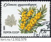 Купить «Почтовая марка СССР 1980 г», иллюстрация № 2932579 (c) Александр Подшивалов / Фотобанк Лори
