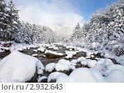 Купить «Восточные Саяны. Мороз и солнце. Река и лес после снегопада», фото № 2932643, снято 30 октября 2011 г. (c) Виктория Катьянова / Фотобанк Лори