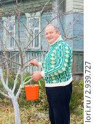 Купить «Побелка плодовых деревьев», эксклюзивное фото № 2939727, снято 6 ноября 2011 г. (c) Майя Крученкова / Фотобанк Лори