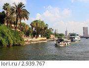 Купить «Египет.Пейзаж в Каире.Вид с Нила.», фото № 2939767, снято 1 сентября 2011 г. (c) АЛЕКСАНДР МИХЕИЧЕВ / Фотобанк Лори