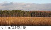 Купить «Пейзаж Высоцка», фото № 2945419, снято 23 октября 2011 г. (c) Марина Гуменюк / Фотобанк Лори