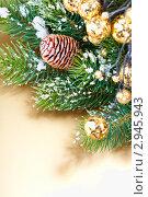 Купить «Новогодняя композиция», фото № 2945943, снято 1 ноября 2011 г. (c) Наталия Кленова / Фотобанк Лори