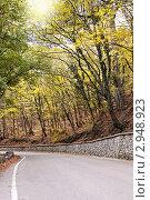 Купить «Дорога в осеннем лесу», фото № 2948923, снято 28 октября 2011 г. (c) Nickolay Khoroshkov / Фотобанк Лори