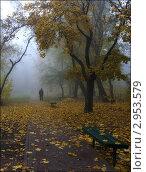 Осеннее одиночество. Стоковое фото, фотограф Володимир Щербина / Фотобанк Лори