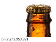 Купить «Горлышко от пивной бутылки с крышкой», фото № 2953891, снято 15 ноября 2011 г. (c) Анатолий Типляшин / Фотобанк Лори
