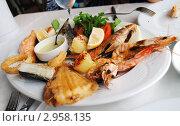 Купить «Жареные морепродукты с лимоном и соусом на тарелке», фото № 2958135, снято 30 октября 2011 г. (c) Екатерина Шелыганова / Фотобанк Лори