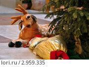 Игрушечный олень под елкой. Стоковое фото, фотограф Беляева Елена / Фотобанк Лори