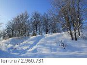 Снежный холм с деревьями на фоне синего неба. Стоковое фото, фотограф Tatyana Kubasova / Фотобанк Лори