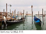 Купить «Венеция. Стоянка гондол у пристани Сан-Марко», фото № 2962111, снято 16 апреля 2010 г. (c) Виктория Катьянова / Фотобанк Лори