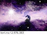 Купить «Звёздное небо», иллюстрация № 2976383 (c) Карелин Д.А. / Фотобанк Лори