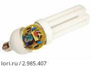 Купить «Составные части энергосберегающей лампы», фото № 2985407, снято 27 ноября 2011 г. (c) Виктор Никитин / Фотобанк Лори