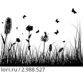 Купить «Черный силуэт полевых цветов и бабочек на белом фоне», иллюстрация № 2988527 (c) Павел Коновалов / Фотобанк Лори