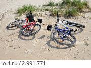 Велосипеды (2011 год). Редакционное фото, фотограф Анастасия Климова / Фотобанк Лори