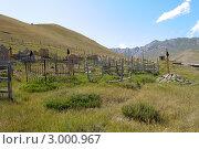 Кладбище в посёлке, Киргизия (2011 год). Стоковое фото, фотограф Dmitry Lameko / Фотобанк Лори
