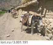 Ветхие строения (типичные) в горном посёлке Таджикистана (2007 год). Стоковое фото, фотограф Dmitry Lameko / Фотобанк Лори